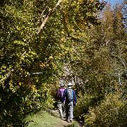 McGee Creek Trail near Mammoth Lakes, CA.