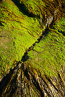 Playa Mol Foirs Geòdha Beach. Mealasta. Southwest Lewis island. Outer Hebrides. Scotland, UK