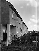 29/09/1952<br /> 09/29/1952<br /> <br /> 29 September 1952<br /> Three pairs of twins living on Courtown Road, Kilcock , Co. Kildare.