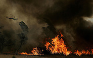 A helicopter prepares to drop water on a brushfire in the Del Dios area of Escondido, Calif.   The Witch Fire, which started outside of Ramona, CA, has burned over a thousand structures and forced over 300,00 to evacuate in what is called San Diego's worst fire ever.