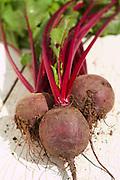 Beetroot Boltardy Beta Vulgaris Root Vegetable