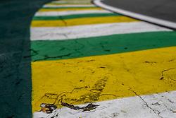 November 10, 2018 - Sao Paulo, Brazil - Motorsports: FIA Formula One World Championship 2018, Grand Prix of Brazil World Championship;2018;Grand Prix;Brazil ,  colors of brazil  (Credit Image: © Hoch Zwei via ZUMA Wire)