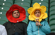 Twickenham. Great Britain.<br /> [Hats] The Rose of England and Daffodil of Wales<br /> RBS Six Nations Rugby, England vs Wales at the RFU Twickenham Stadium. England.<br /> <br /> Saturday  12/03/2016 <br /> <br /> [Mandatory Credit; Peter Spurrier/Intersport-images]