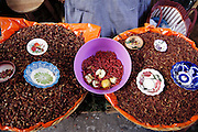 Rosa Matíaz sells roasted and salted chapulines (grasshoppers, large on left and small on right) and live maguey worms (feeding on apple halves) in Oaxaca's Central Market, Oaxaca, Mexico. Image from the book project Man Eating Bugs: The Art and Science of Eating Insects.