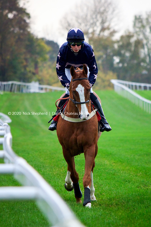 Connor O'Farrell riding Don't Panic at Sandown Park Racecourse on the 05 November 2011 - EDITORIAL USE ONLY