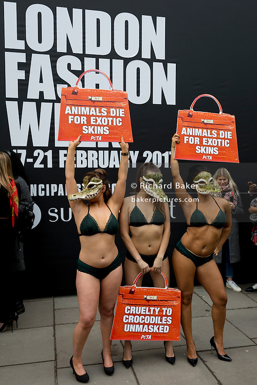 """Lingerie-clad models stage a protest by the animal rights organisation, Peta against the suffering of animals, on 17th Febriary 2017, in London, England, United Kingdom. The group stripped off into matching green underwear and crocodile masks before posing outside the show's main venue on the Strand in central London. Peta is campaigning against the use of exotic animal skins in the fashion industry. It follows an investigation of crocodile farms which found animals were confined to pits and sometimes still alive when their skin was torn off, Peta said. London Fashion Week is a clothing trade show held in London twice each year, in February and September. It is one of the """"Big Four"""" fashion weeks, along with the New York, Milan and Paris. The fashion sector plays a significant role in the UK economy with London Fashion Week alone estimated to rake in £269 million each season. The six-day industry event allows designers to show their collections to buyers, journalists and celebrities and also maintains the city's status as a top fashion capital. (Photo by Richard Baker / In Pictures via Getty Images)"""