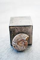 Cube And Spiral Ceramic cube and Ammonite Nautilus