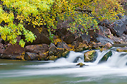 Fall color and cascade along the Virgin River, Zion National Park, Utah