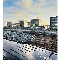 Parool 9oktober 2013: Zeeburgereilnd in Stadsbeeld