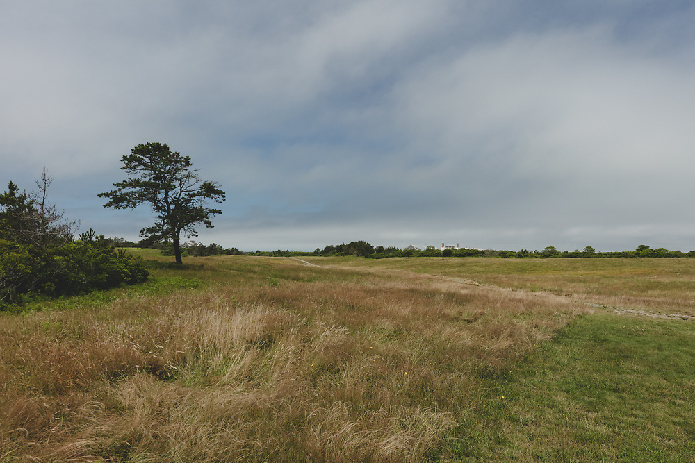 The wind swept landscape on the Northwest corner of Nantucket Island.