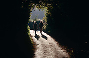 An elderly couple walk down a country lane near Burrington Combe, North Somerset. With a warm sun on their backs and their long shadows on the ground below them, the people are seen as silhouettes as they enter the darkness of the country lane's darkest corner. Burrington Combe is a Carboniferous Limestone gorge near the village of Burrington, on the north side of the Mendip Hills Area of Outstanding Natural Beauty, in North Somerset, England.