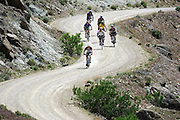 """Cary Smith (out front of pack), 43, of Littleton, Co.  leads a group of riders down an access road as they make their way to """"Moore Fun"""" during the 11th Annual Fruita Fat Tire Festival on Friday April 28, 2006. The Festival went back to its roots this year featuring loosely organized rides many hosted by local riders, expo tents, music and plenty of riding on the many trails that have made Fruita famous world-wide. The event lasted all weekend. Smith said he has been to all 11 Fruita Fat Tire Festivals..(MARC PISCOTTY/ © 2006)"""