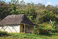 Thatched farm house in Vinales, Pinar del Rio, Cuba.