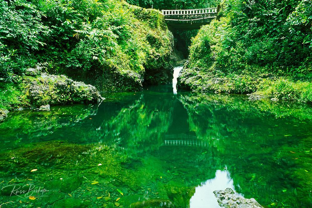 Ching's Pond (a favorite swimming hole) along the road to Hana, Maui, Hawaii
