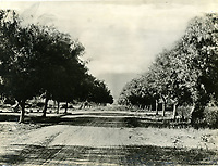 1901 Looking north up Wilcox Ave from Hollywood Blvd.