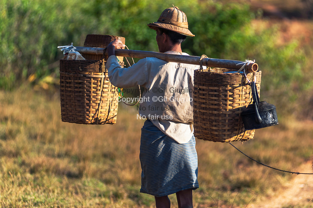 Myanmar, état Shan, homme ethnie Pao travaillant aux champs autour du village de Hti Tein // Myanmar, Shan state land, Pao etnic group man work at field, field of Hti Tein village