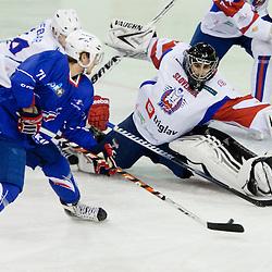 20111217: SLO,  Ice Hockey - Euro Challenge EICH Tournament, Slovenia vs France