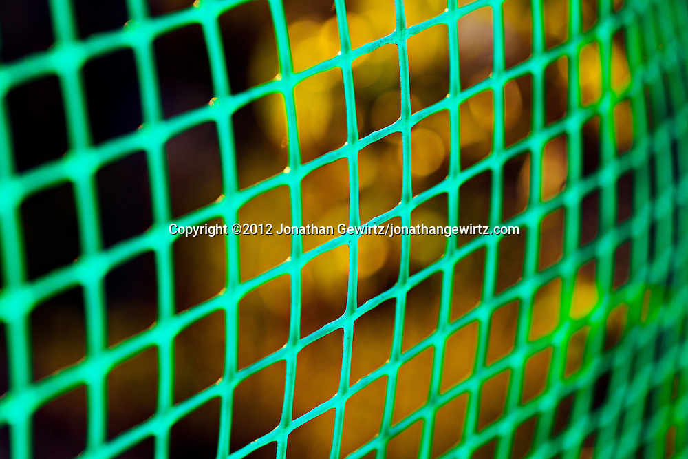 Green plastic netting used as a garden fence. WATERMARKS WILL NOT APPEAR ON PRINTS OR LICENSED IMAGES.
