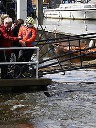 © Licensed to London News Pictures. 10/05/2021. London, UK. Members of the public look on as a young minke whale remains trapped in the River Thames at Teddington Lock in south west London. Fire crews and the British Divers Marine Life group worked with an Rescue Royal National Lifeboat Institute (RNLI) crew in an eff cinnamonort to save the whale after it got stuck last night. But it is now free . Photo credit: Peter Macdiarmid/LNP