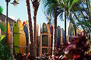 Surfboards, Waikiki, oahu<br />