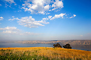 Israel, lower Galilee landscape, Overlooking the sea of Galilee Photographed from Poria Illit. Golan Heights in the background