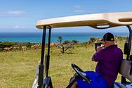 06-11-2017 Foto's genomen tijdens een persreis naar Buffalo City, een gemeente binnen de Zuid-Afrikaanse provincie Oost-Kaap. West Bank Golf Club - Impala's hole 13