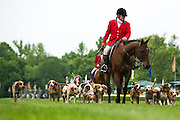 Sights from the 2013 Queens Cup Steeplechase - April 27, 2013: Mecklenburg Hounds course walk