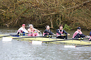 Crew: 197   Op 8+ BAND-4   Pembroke College (Oxford) Boat Club   PMB-Bowen<br /> <br /> Wallingford Head 2017<br /> <br /> To purchase this photo, or to see pricing information for Prints and Downloads, click the blue 'Add to Cart' button at the top-right of the page.
