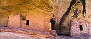 Panoramic image of the abandoned Anasazi ruins in Lower Mule Canyon, Comb Ridge, San Juan County, Utah, USA.