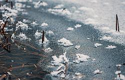 THEMENBILD - Schilf steht aus einer gefrorenen Wasseroberfläche. Schneekristalle liegen auf der Eisfläche, aufgenommen am 04. Jänner 2020 in Kaprun, Oesterreich // Reed stands out of a frozen water surface. Snow crystals lie on the ice surface, in Kaprun, Austria on 2020/01/04. EXPA Pictures © 2020, PhotoCredit: EXPA/Stefanie Oberhauser