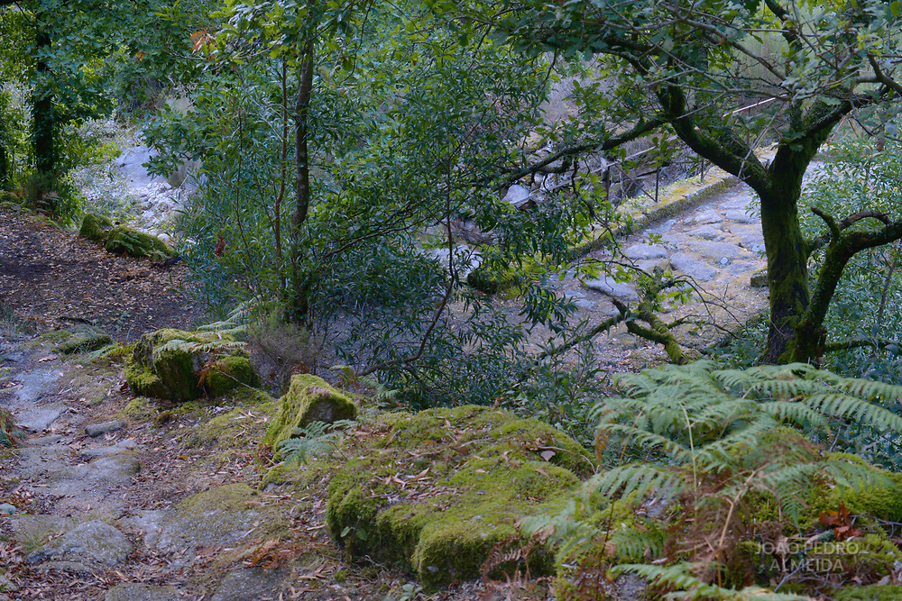 The creeks found in the valleys around Soajo, where people can take a dip in the hotter days.