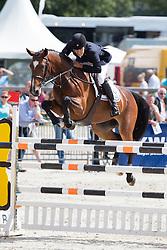De Bruijn Bart (NED) - Amberlina<br /> KWPN Paardendagen - Ermelo 2012<br /> © Dirk Caremans