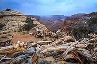 A storm rolls through the Island in the Sky district at Canyonlands National Park in the desert Southwest.