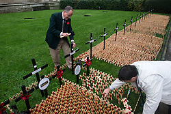 © Licensed to London News Pictures.06/11/2013. London, UK. Volunteers prepare the Field of remembrance at Westminster Abbey. Every November the annual Field of Remembrance at Westminster Abbey is organised and run by The Poppy Factory. This year officially it will be opened on Thursday 7 November. Remembrance crosses are provided so that ex-Service men and women, as well as members of the public, can plant a cross in memory of their fallen comrades and loved ones.Photo credit : Peter Kollanyi/LNP