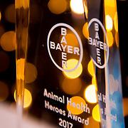 BAYER Awards 2017