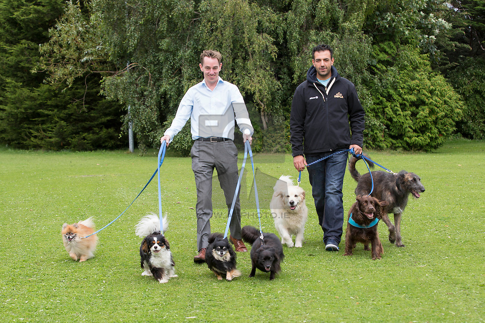 Repro Free: Pictured at the launch of the Dublin Society for the Prevention of Cruelty to Animals (DSPCA)'s Great Irish Dog Walk 2014 – a fun filled doggie themed family day out taking place in the Phoenix Park on Saturday 27 September - are (l-r): Ryan Tubridy, Broadcaster and DSPCA Dog Whisperer Alex Petrilli. <br />  <br /> Alex and Ryan were with some of the doggies that will be attempting to break the Guinness World Record for the Largest Dog Obedience Training Lesson at the event. The current world record for the Largest Dog Obedience Training Lesson is 390 dogs, which was set in Madrid two years ago.<br />  <br /> Owners can sign up for the record attempt when they register for the overall Great Irish Dog Walk event. All participants will receive a commemorative medal and gift bag for themselves and their dog to say that they took part in the record breaking attempt.<br />  <br /> Everyone attending The Great Irish Dog Walk will enjoy a fun 3km walk as well as Doggie Fun Zones, face painting, goody bags, and a host of free giveaways.<br />  <br /> Dog owners who wish to attend The Great Irish Dog Walk can register on line at www.dspca.ie or contact the DSPCA directly. All dogs and kiddies are invited to take part for FREE, while adults will be charged a €10 registration fee. All dogs attending must be on a leash, with rules and regulations applying to the event.<br />  <br /> Details<br />  <br />  <br /> Event:              DSPCA Great Irish Dog Walk<br /> Location:          Phoenix Park, Dublin (near the OSI building off Chesterfield Avenue)<br /> Time:               9.00am to 4.00pm - Guinness World Record attempt for largest dog obedience training lesson at 1.00pm<br />  <br />  <br /> For further information, visit www.dspca.ie<br /> For a fundraising form, see here<br />  <br />  <br /> For further details, contact:<br /> Breda Brown / Simon Fullam, Unique Media<br /> Tel: (01) 522 5200 or 087 2487120 (BB)
