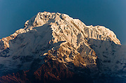 """The south face of Annapurna South (23,684 feet /  7219 meters), seen at sunrise from Tolka, in the Himalaya mountains of Nepal.  Annapurna South (also known as Annapurna Dakshin, or Moditse) was first climbed in 1964 by a Japanese expedition, via the North Ridge. Annapurna is Sanskrit for """"Goddess of the Harvests."""" In Hinduism, Annapurna is a goddess of fertility and agriculture and an avatar of Durga."""