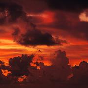 Stunning sunset over Pinelands in Everglades National Park, FL.