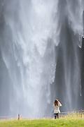 Seljalandsfoss is one of the most famous waterfalls of Iceland. This waterfall of the river Seljalandsá drops 60 metres over the cliffs of the former coastline. It is possible to go behind the waterfall   Seljalandsfoss er en av de mest kjente fossene på Island. Fossen fra elva Seljalandsá har et fritt fall på 60 meter, og treffer det som i sin tid var den gamle kystlinjen. Det er mulig å gå bak fossen.