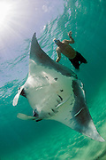 Snorkerler and Manta Ray (Manta birostris) offshore Palm Beach, FL