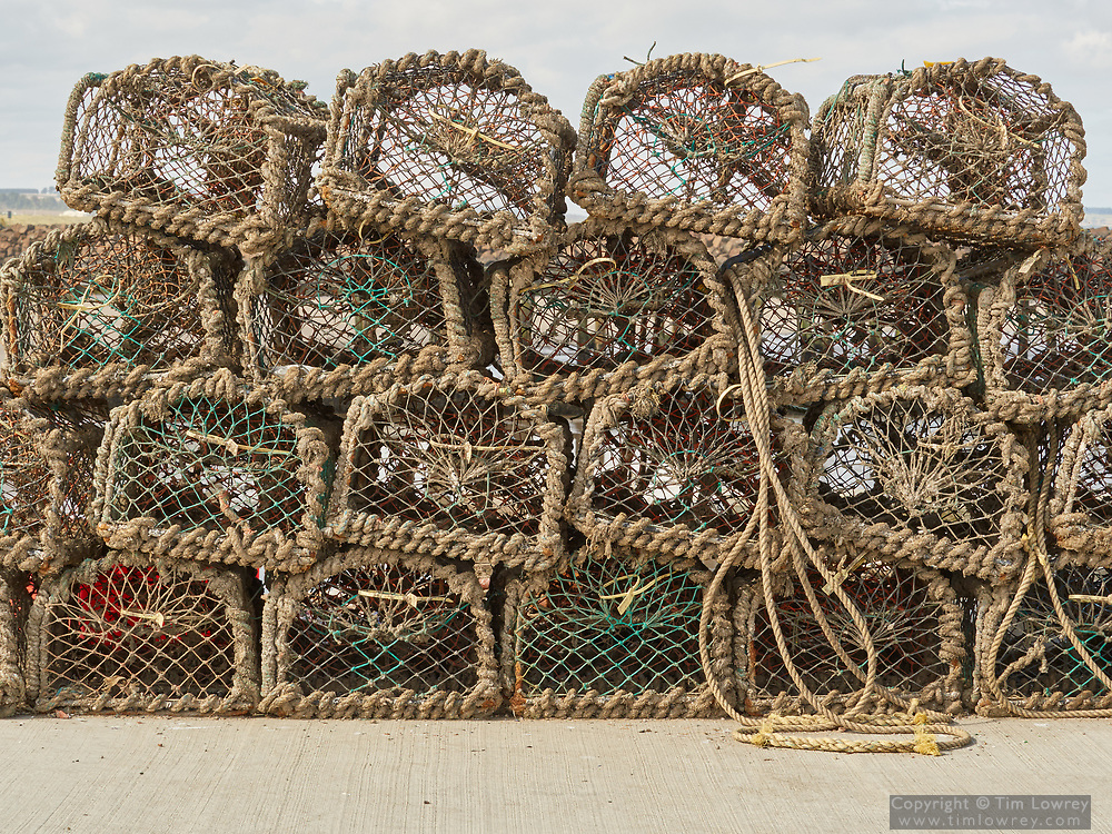 Lobster Pots Stacked On The Harbour At The Costal Town Of Amble, Northumberland