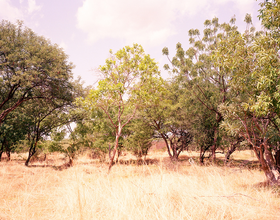 """NUBA MOUNTAINS, SUDAN – JUNE 9, 2018: The current view of a landscape near the 2014 bombing which destroyed much of Hieban Bible Institute. During the bombing, six children from the same family were killed when a parachute bomb dropped near the Institute's entrance. Four other adults also perished nearby from bombs dropped by high flying cargo planes repurposed by the Sudan Armed Forces, which regularly carry out inaccurate but devastating bombing campaigns in predominantly civilian areas.<br /> <br /> In 2011, the government of Sudan expelled all humanitarian groups from the country's Nuba Mountains. Since then, the Antonov aircraft has terrorized the Nuba people, dropping more than 4,080 bombs on hospitals, schools, marketplaces and churches. Today, vestiges of the Antonov riddle the landscapes of daily life, where more than 1 million Nuba live in famine conditions – quietly enduring the humanitarian blockade intended to drive them out of the region. The skies are mostly clear. Yet the collective memory of the bombings remains an open wound, and the Antonov itself a persistent threat. So frequent were the attacks that the Nuba nicknamed the high flying aircraft and its dismal hum: """"Gafal-nia ja,"""" they would declare, running to the hillsides. """"The loss of appetite has come."""""""