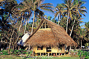 traditional thatch dwelling, Tobi Island, Southwest Islands, Palau or Belau, Micronesia, ( Western Pacific Ocean )