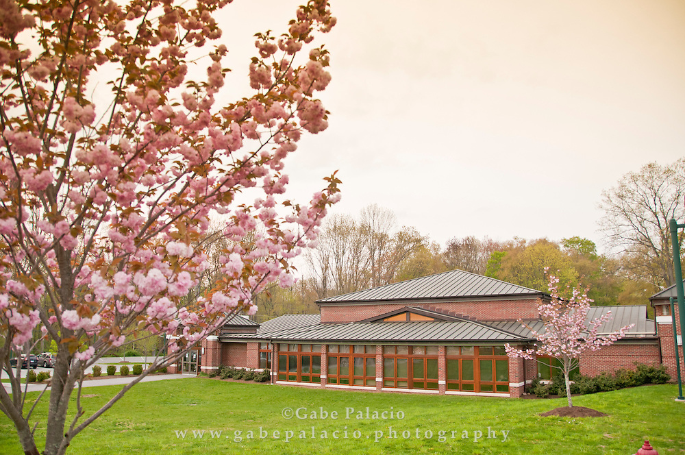 Spring at the Harvey school in Katonah New York on May 3, 2011. (photo by Gabe Palacio)