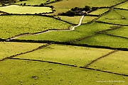 Farm and lane within rolling farmland and fields of sheep on the Llyn (Lleyn) Peninsula at this most Westerly tip of North Wales.