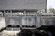 San Rocco, Milano sud : Impianto di depurazione delle acque reflue. nella foto l'acqua depurata in uscita. San Rocco Waste Water Treatment plant