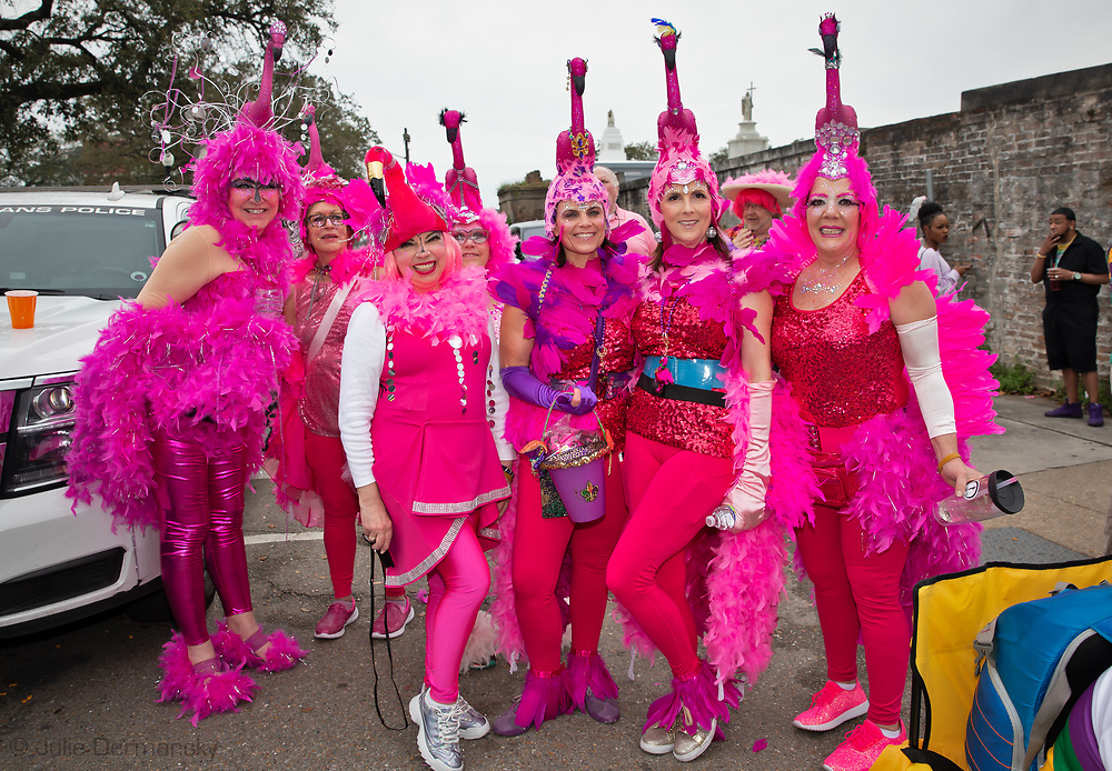Women in flamigo costumes on Mardi Gras day in New Orleans next to a cemtery