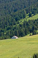 RICOVERO DI MONTAGNA, GALLIO (VI), ALTOPIANO DEI SETTE COMUNI, VENETO, ITALIA