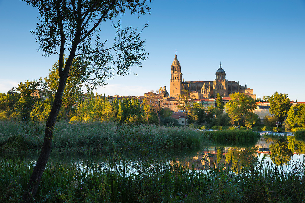 Salamanca - famous medieval cathedral and university city, Rio Tormes in foreground, Spain