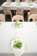 tables with plates and utensils with green salad